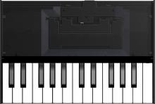 Roland K-25M 25 Key Keyboard for Boutique  …