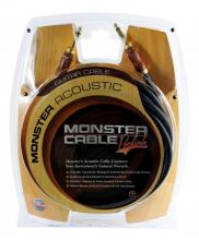 Monster Acoustic Instrument 21'